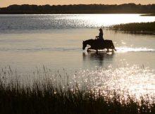 Urlaub mit Pferd auf Rügen